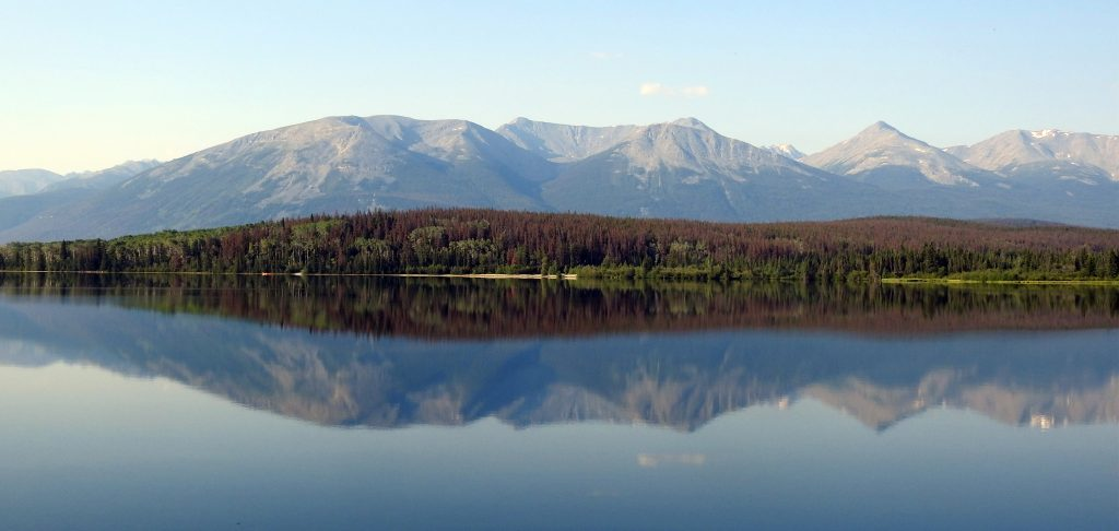 Scenery with a Side of Birding: Canadian Rockies by Train and Bus